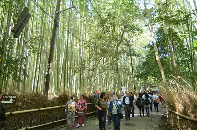 JR嵯峨嵐山駅から竹林の道を通って野宮神社への行き方道順06
