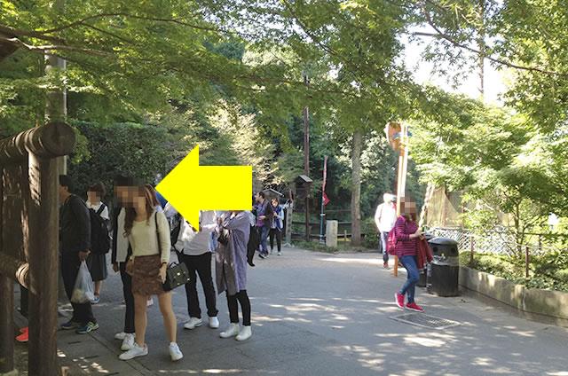 トロッコ嵐山駅から嵐山モンキーパークいわたまでの行き方道順02