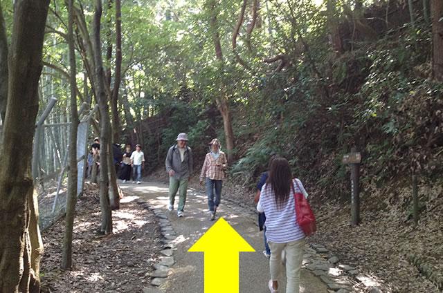トロッコ嵐山駅から嵐山モンキーパークいわたまでの行き方道順04