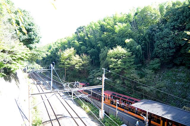 トロッコ嵐山駅から嵐山モンキーパークいわたまでの行き方道順05