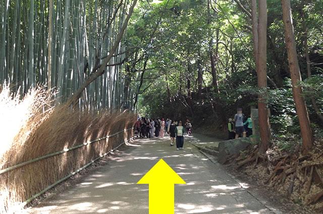 トロッコ嵐山駅から嵐山モンキーパークいわたまでの行き方道順06