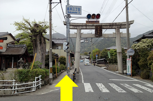 JR京都駅から映画「曇天に笑う」の聖地巡礼日吉東照宮への行き方10